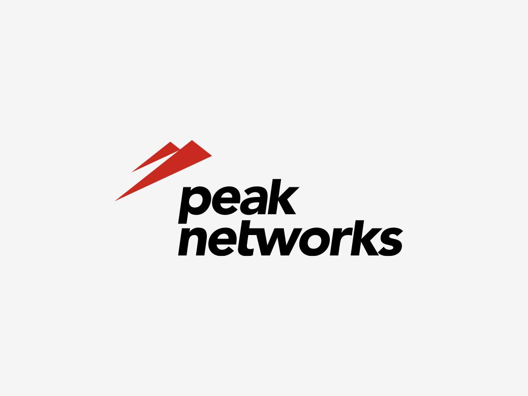 peaknetworks-logo-design-buero-ink